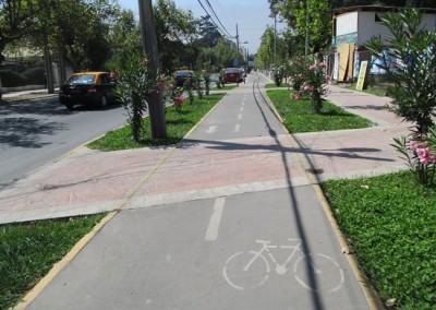 Mejoramiento Veredón Sur AV. Walker Martínez